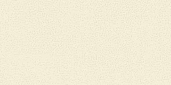 - 300 x 600 mm (12 x 24 pulgadas) - 71-Rustic-Ivory