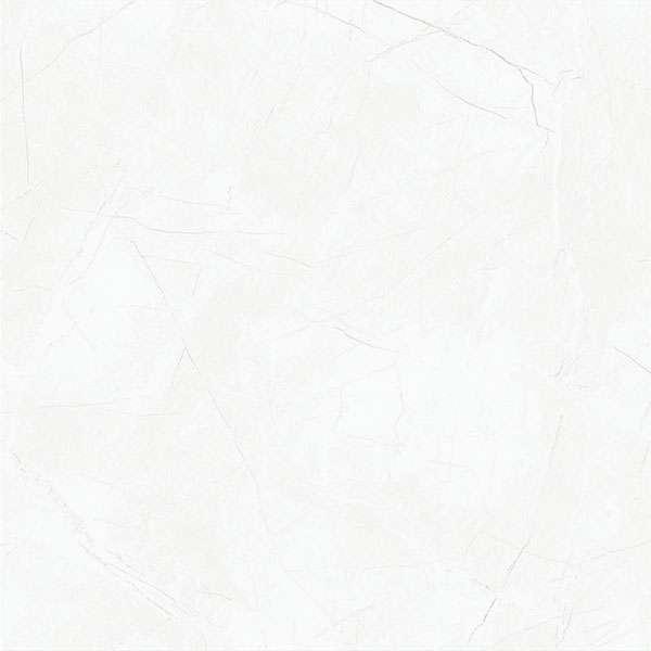 - 600 x 600 mm (24 x 24 pulgadas) - svpl-2019-1